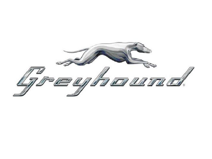 GreyhoundHMPG